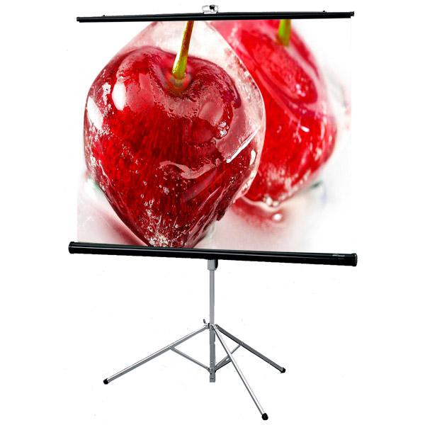 Экран для видеопроектора Draper Consul NTSC 3:4 127*169 XT1000E MW (216020B) экран для видеопроектора draper consul av 1 1 152 152 xt1000e mw 216003b