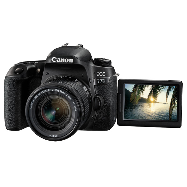 Фотоаппарат зеркальный Canon EOS 77D EF-S 18-55 IS STM Kit фотоаппарат canon eos m100 18mpix 3 1080p wifi 15 45 is stm lp e12 черный 2209c012