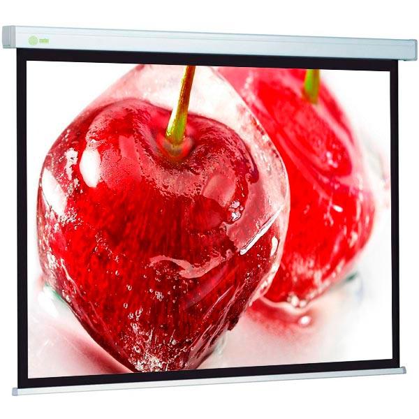 Экран для видеопроектора Cactus CS-PSW-168x299