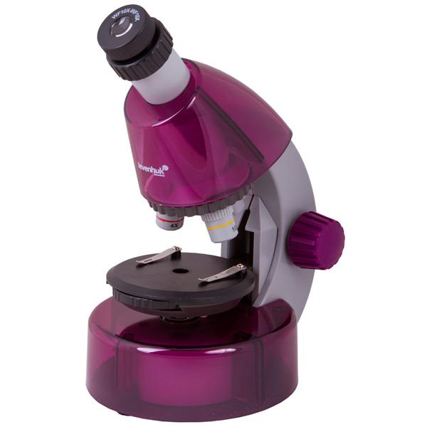 Микроскоп Levenhuk LabZZ M101 Amethyst