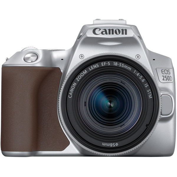 Фотоаппарат зеркальный Canon EOS 250D EF-S 18-55 IS STM Kit Silver