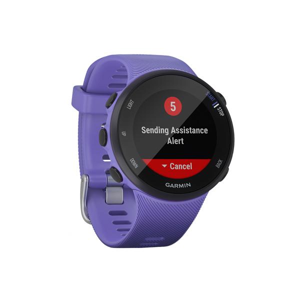 Спортивные часы Garmin Forerunner 45 GPS S Iris