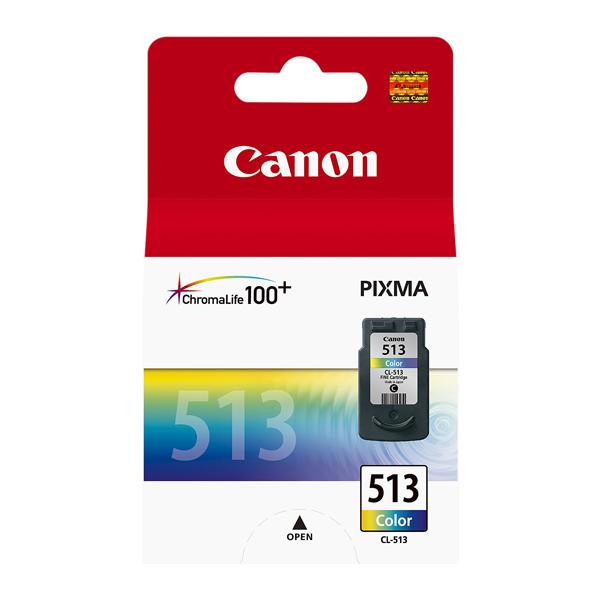 Картридж для струйного принтера Canon CL-513 цвет 13