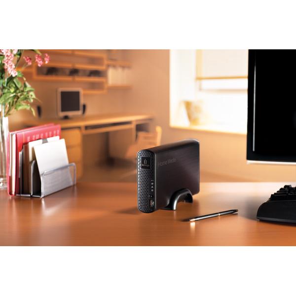 Iomega home media network hard drive data recovery