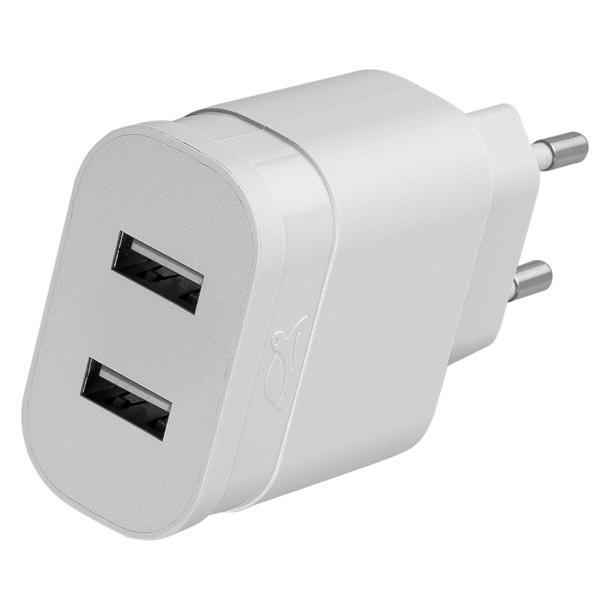 Сетевое зарядное устройство RivaCase 2 USB 2.4A (VA 4122 W00) сетевое зарядное устройство apple usb мощностью 5 вт md813zm a