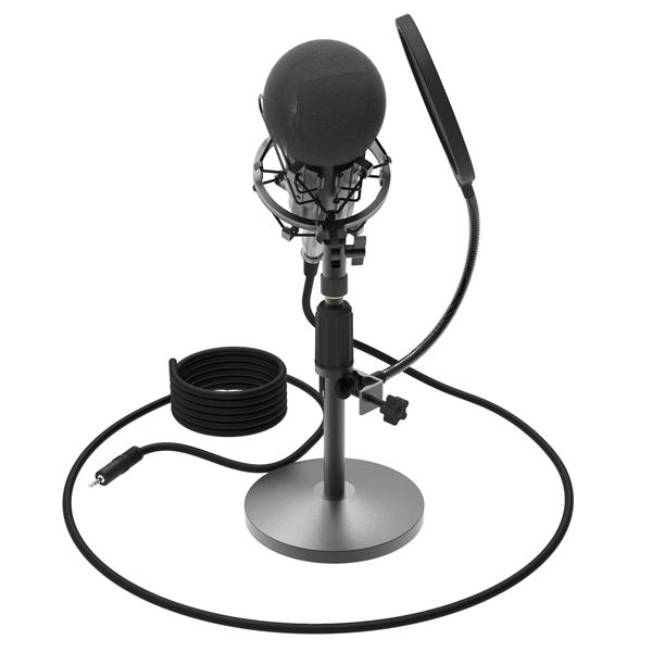 Микрофон для компьютера Ritmix RDM-175 Black