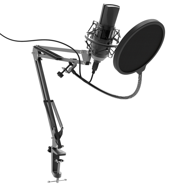 Микрофон для компьютера Ritmix RDM-180 Black