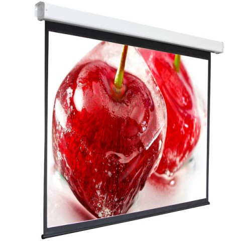"""Фотография товара экран для видеопроектора Digis Electra-F, 1:1, 100"""", 186x189, MW (DSEF-1105) (10013471)"""