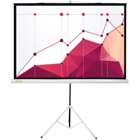 Фотография товара экран для видеопроектора Cactus CS-PST-180x180 (10013874)